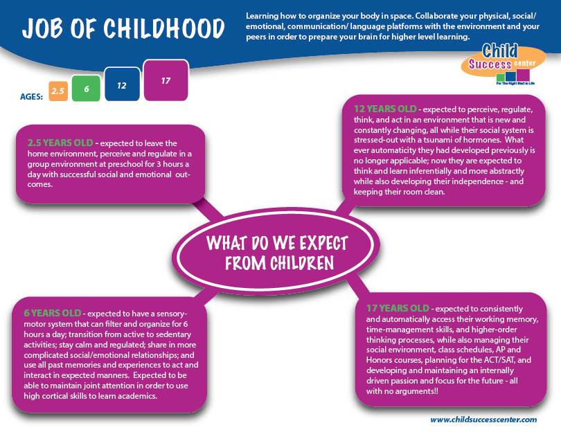 Executive Function - the job of childhood