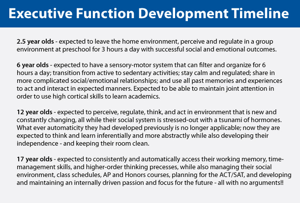 Executive Function Development Timeline