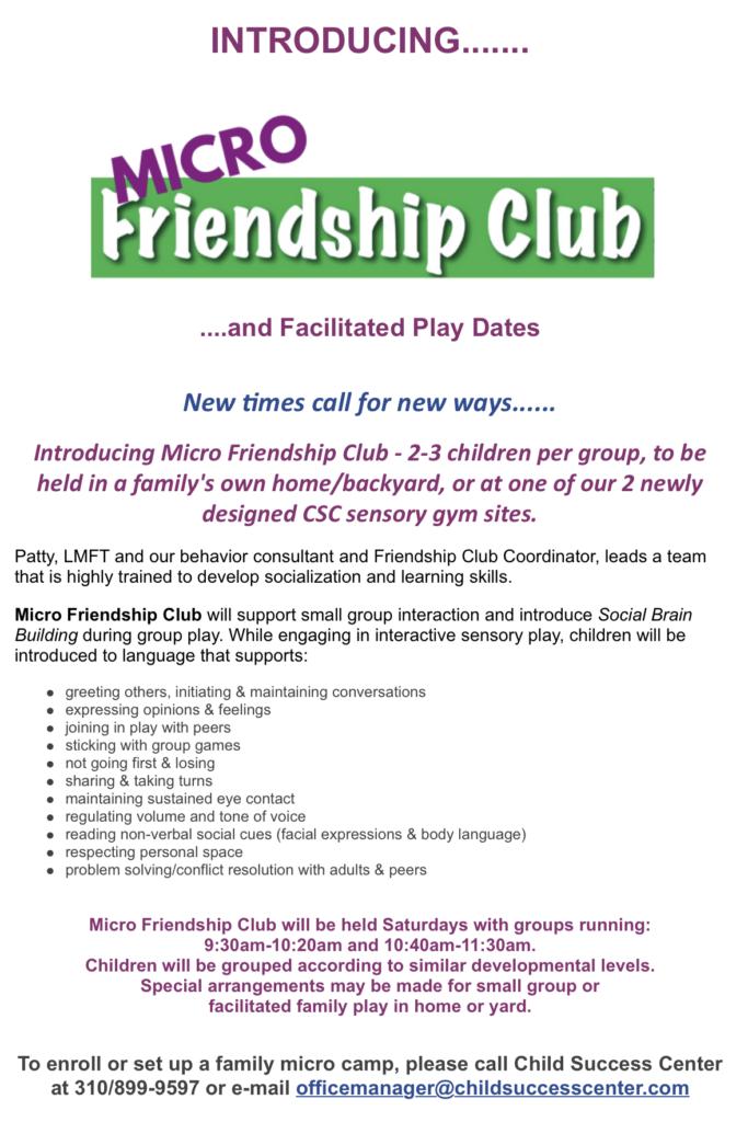 Micro Friendship Club